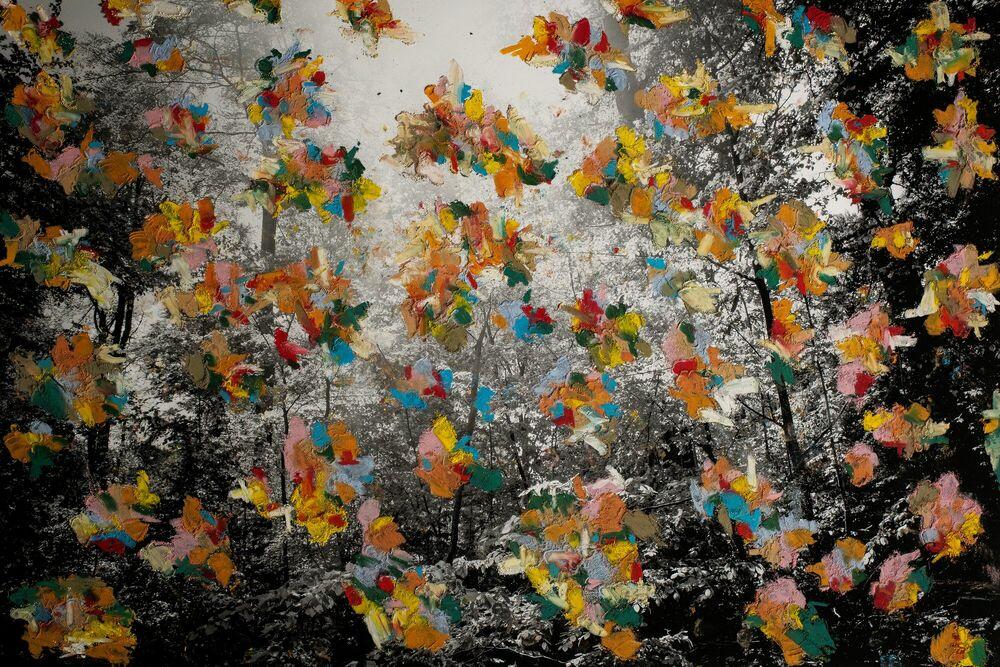 Fotografie UNTITLED 3 - NIKOLAJ CALLESEN - Bildermalerei