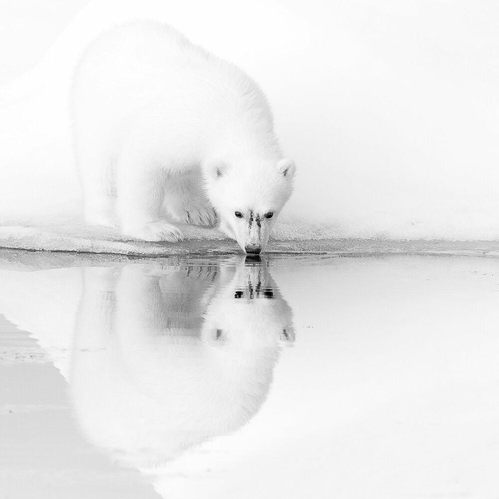 Fotografie ICE REFLECTIONS - NOLWENN HADET - Bildermalerei