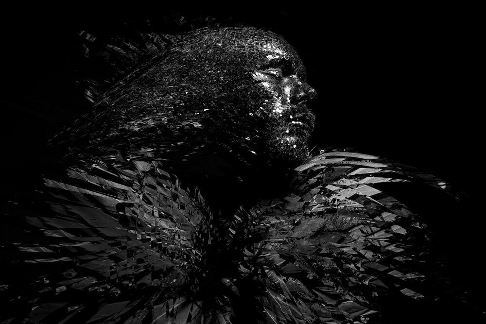 Photographie FRAGMENT ZERO DARK BIRD - PASCAL MOURI - Tableau photo