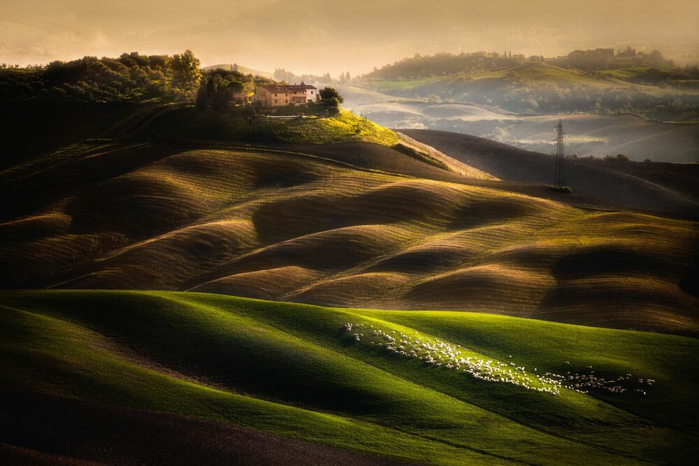 Photographie HOUSE IN THE FIELDS - PETER SVOBODA - Tableau photo