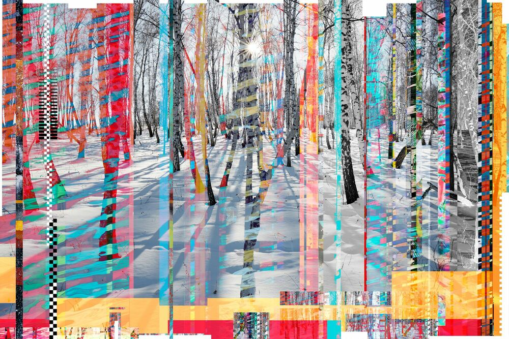 Photographie Winterly Birch forest blindes - RUDI SEBASTIAN - Tableau photo