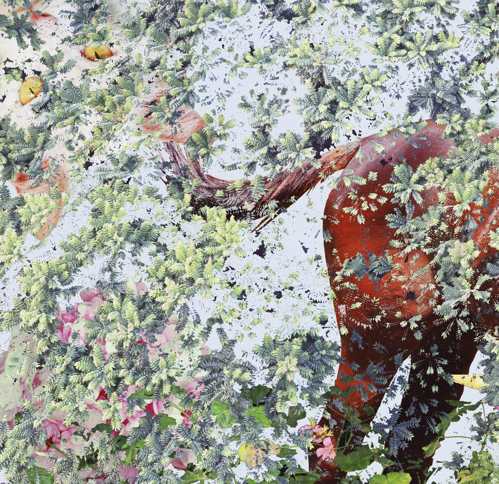 Photograph Comes Summer Wind - SHAN KUN WU - Picture painting