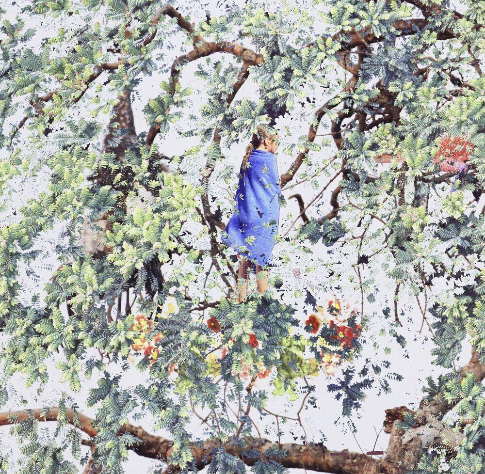 Kunstfoto Eagle on Top - SHAN KUN WU - Foto schilderij