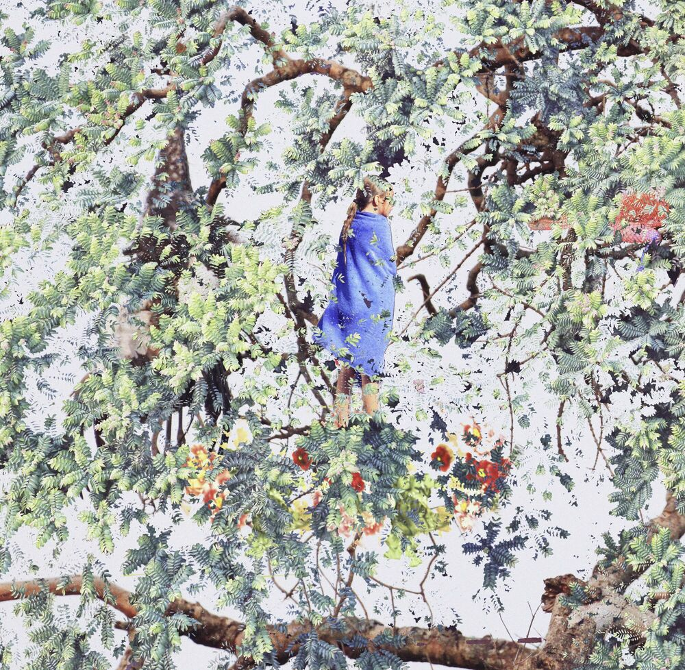Fotografie Eagle on Top - SHAN KUN WU - Bildermalerei