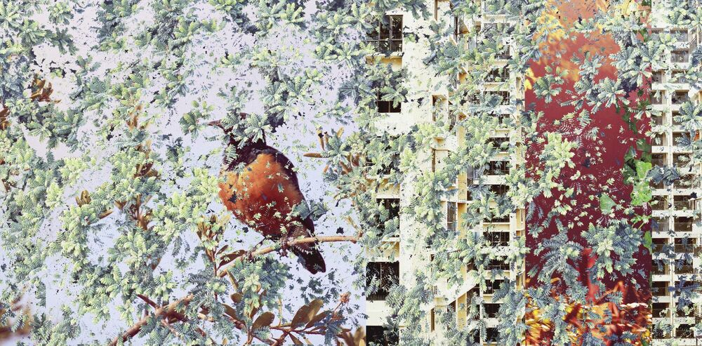 Photograph Night with Bird - SHAN KUN WU - Picture painting