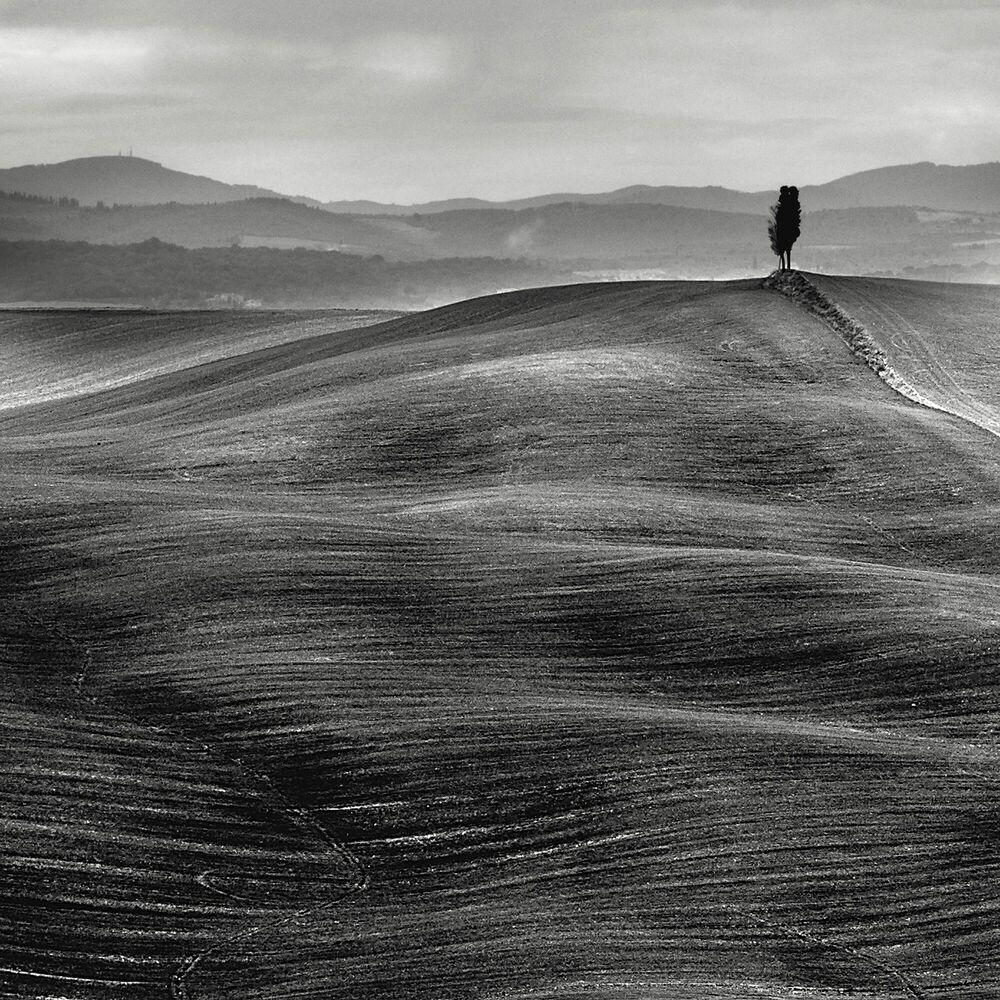 Photographie Dune Toscane - STEFANO ORAZZINI - Tableau photo