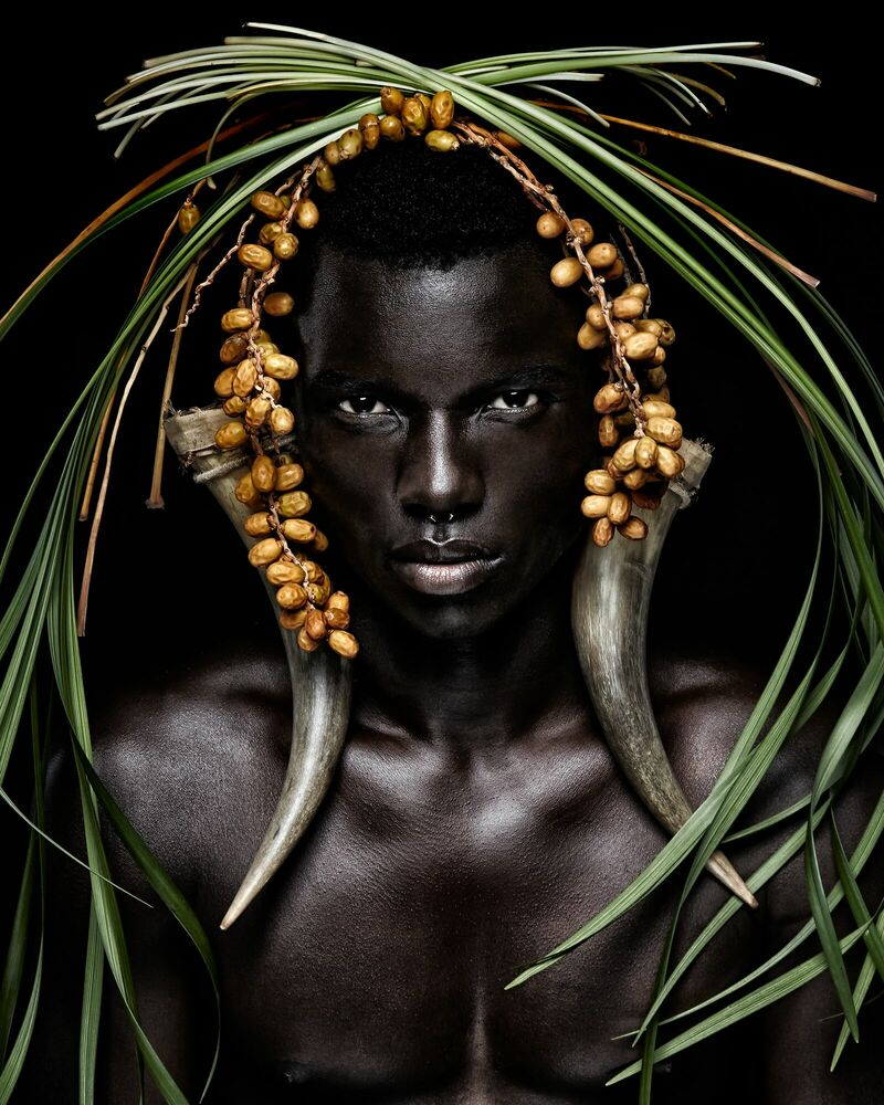Fotografie King of Africa - STEVEN MENENDEZ  - Bildermalerei