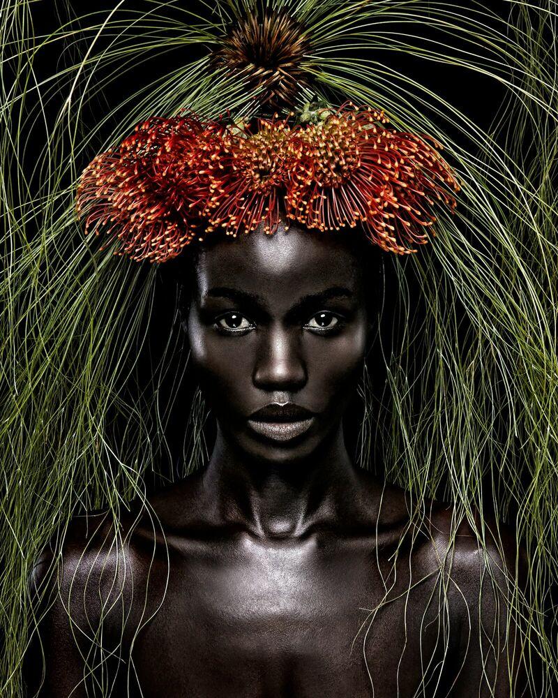 Fotografia Queen of Africa - STEVEN MENENDEZ  - Pittura di immagini