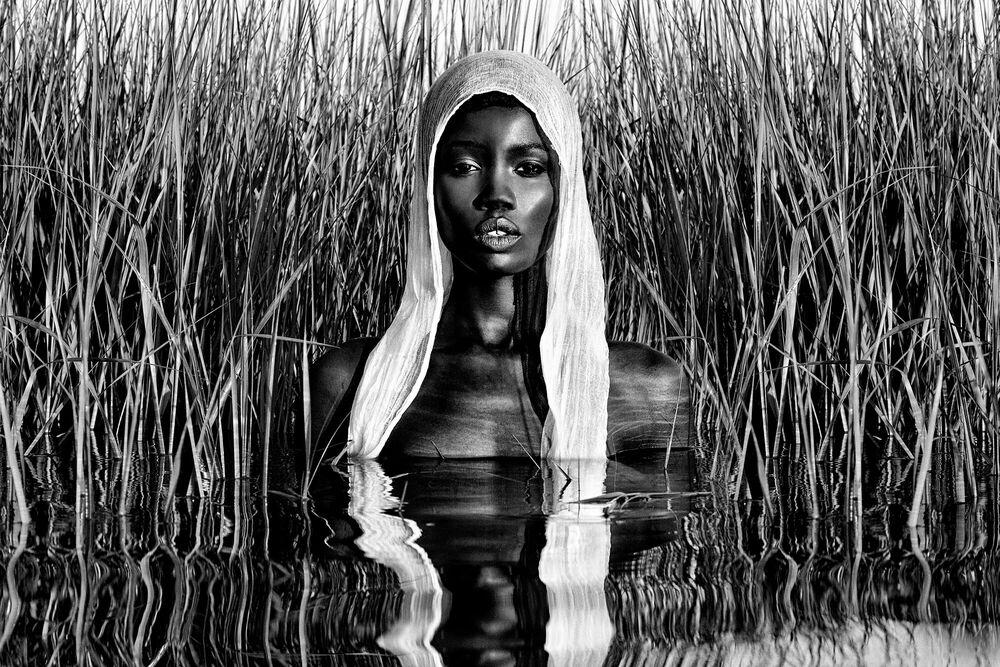 Photograph Water Goddess - STEVEN MENENDEZ  - Picture painting