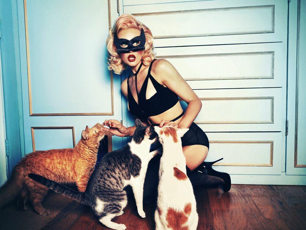 Fotografie NEW YORK DIARIES THE CATS - TATIANA GERUSOVA - Bildermalerei