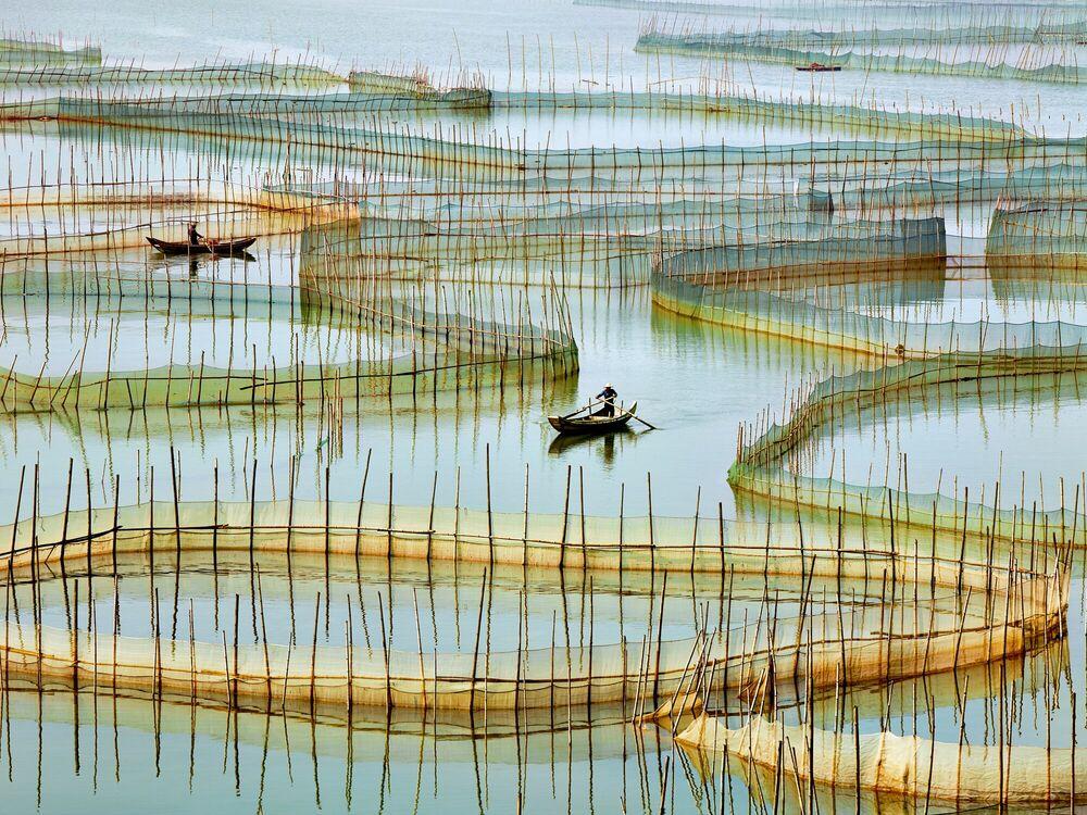 Fotografia Labyrinth - THIERRY BORNIER - Pittura di immagini