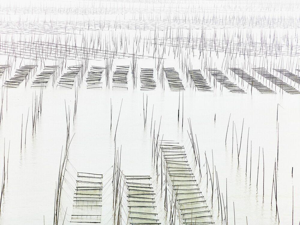 Fotografie Seaweed farm - THIERRY BORNIER - Bildermalerei