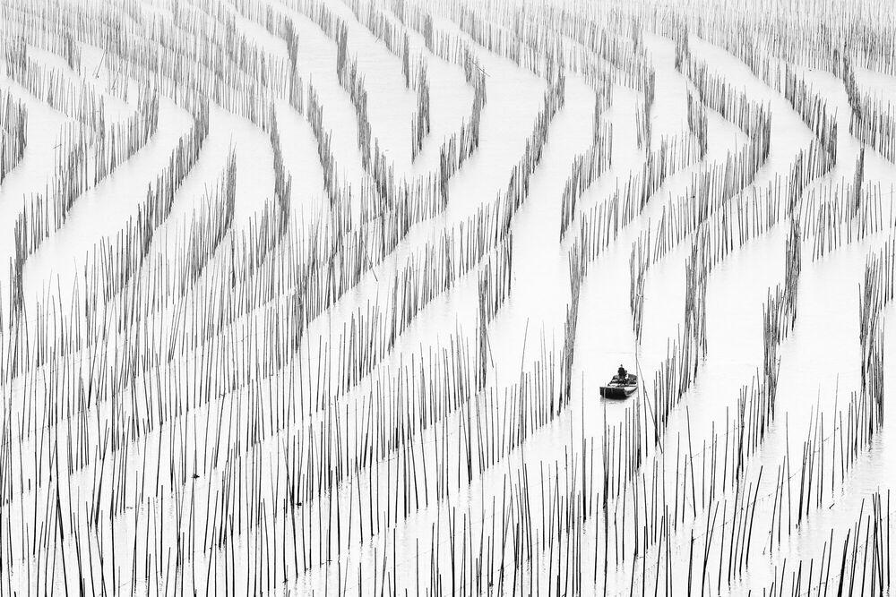 Fotografia Seaweed Farms - Zay Yar Lin - Pittura di immagini