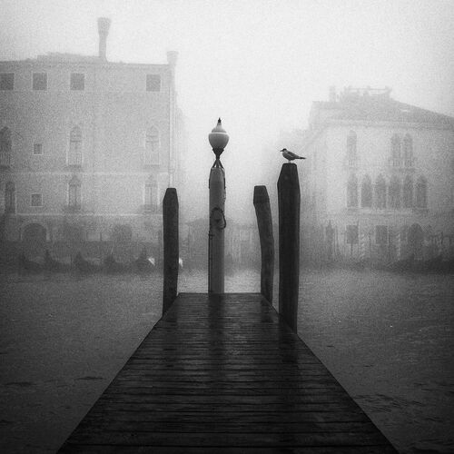 FOG IN VENICE PART 2 - ANDO FUCHS - Photograph