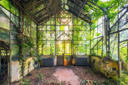 Arche végétale III Italie - AURELIEN VILLETTE - Photograph