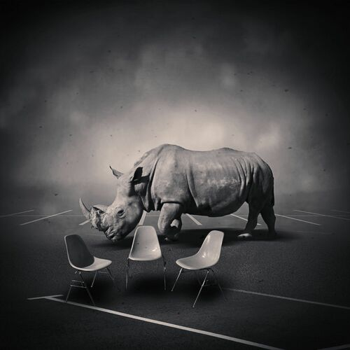 DREAMSPACE RELOADED 49 - RHINOCEROS