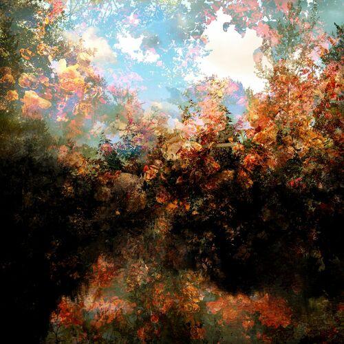 Fragment de paysage 5921 - Didier Claes - Photographie