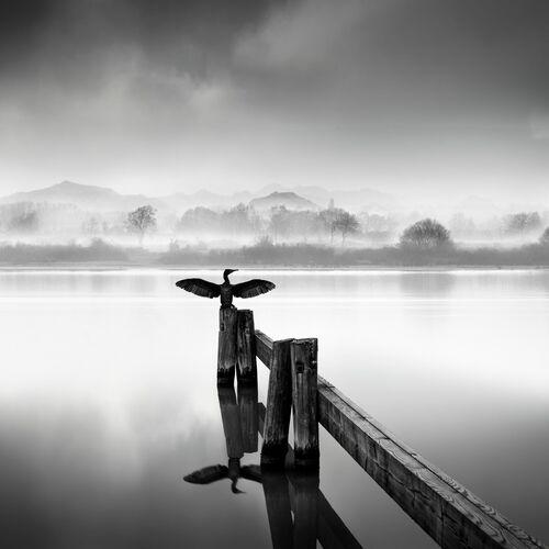 FLY AWAY - GEORGE DIGALAKIS - Kunstfoto