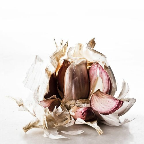 FOOD WASTE GARLIC