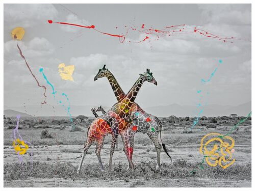 GIRAFFE DUET -  I'M NOT A TROPHY - Photograph