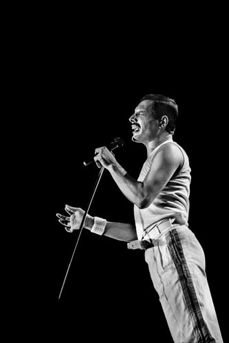 Freddie Mercury - JAN WERNER - Photograph