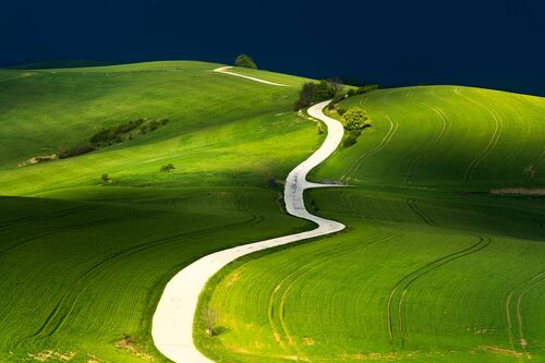 PATH OF LIFE - JANEK SEDLAR - Kunstfoto