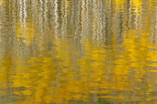 AUTUMN REFLECTIONS IN MOUNTAIN LAKE III