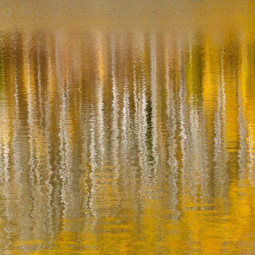 AUTUMN REFLECTIONS IN MOUNTAIN LAKE IV -  JOHN EASTCOTT ET YVA MOMATIUK - Kunstfoto