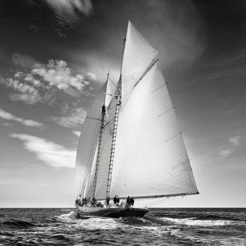 Mariette de retour - JONATHAN CHRITCHLEY - Photograph