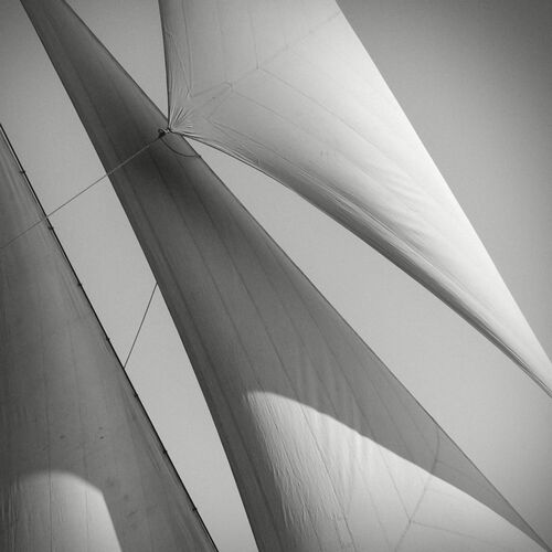 Toutes voiles dehors - JONATHAN CHRITCHLEY - Photographie