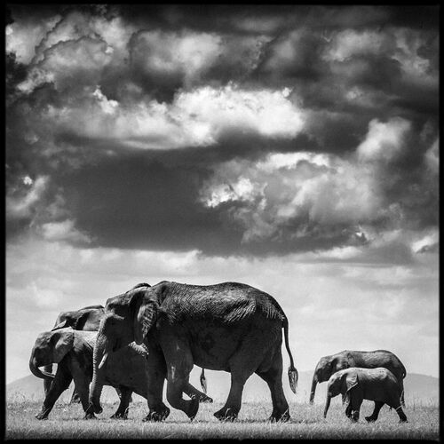 Under the Clouds II - LAURENT BAHEUX - Kunstfoto