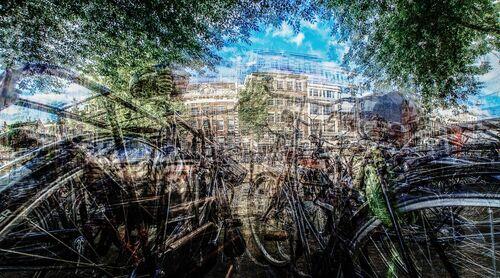 AMSTERDAM - IS DIT MIJN FIETS ? - LAURENT DEQUICK - Fotografie