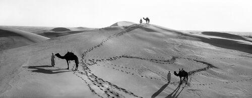 MÉHARA DUNES DU SAHARA ALGÉRIEN -  LEON ET LEVY - Fotografía
