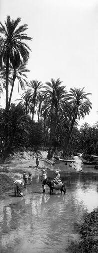 OUED OASIS SUD DU SAHARA ALGÉRIEN II -  LEON ET LEVY - Photograph