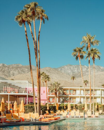 ICONIC POOL PALM SPRINGS - LUDWIG FAVRE - Fotografie