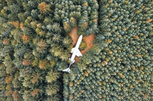 OREGON PLANE - LUDWIG FAVRE - Photograph