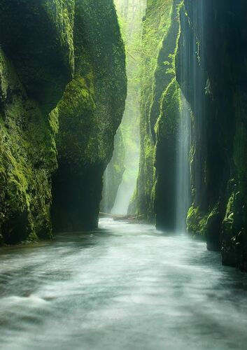 Rainforest Canyon Oneonta Gorge Oregon - MARC ADAMUS - Kunstfoto