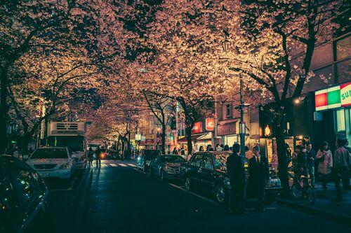 TOKYO VII - MASASHI WAKUI - Kunstfoto