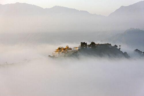Namo Buddha - MATTHIEU RICARD - Fotografie