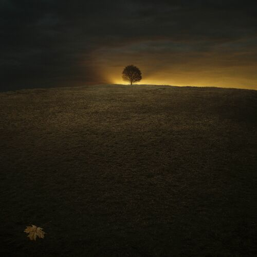 All Is Now - MICHAL KARCZ - Photograph