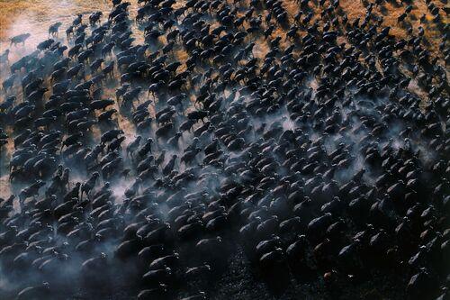 Comme une mer déchainée - PATRICK DE WILDE - Photograph