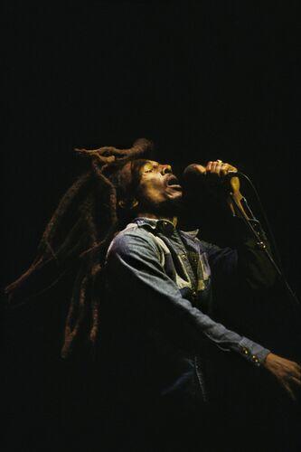 Marley - PETER HANKFIELD - Kunstfoto
