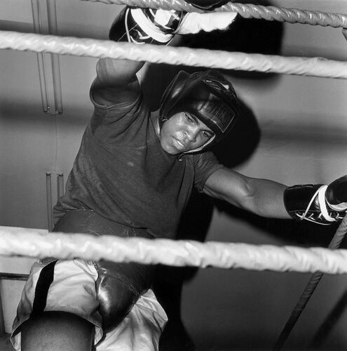 Cassius Clay, Allemagne 1966  - PRESSE SPORTS L'EQUIPE - Photographie