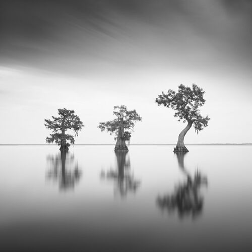 GUARDIANS OF ORACLE VI - SEBASTIEN GREBILLE - Fotografia