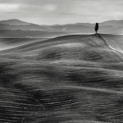 Dune Toscane - STEFANO ORAZZINI - Kunstfoto