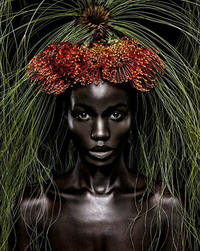 Queen of Africa - STEVEN MENENDEZ  - Kunstfoto