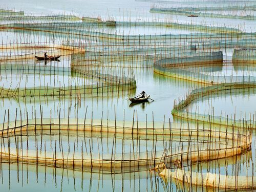 Labyrinth - THIERRY BORNIER - Photographie