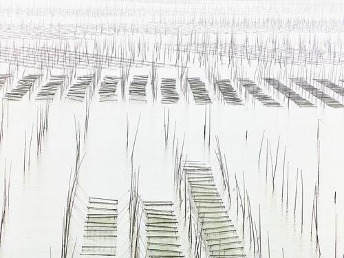 Seaweed farm - THIERRY BORNIER - Kunstfoto