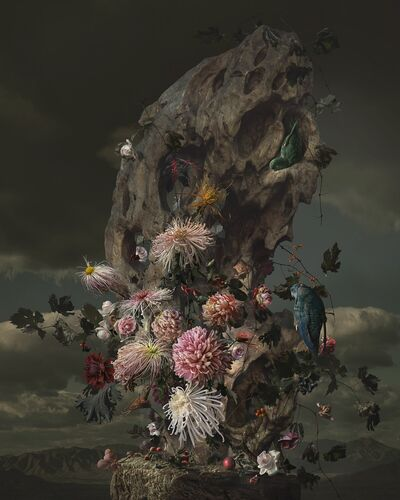 ROCKERY AND PARROT - YANG BIN - Fotografía