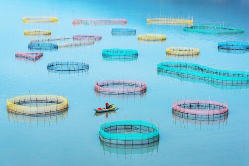 Fish Farms - Zay Yar Lin - Photographie